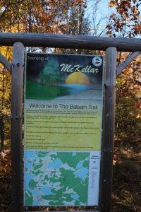 the-balsam-trail